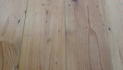 Sample of Pitch Pine