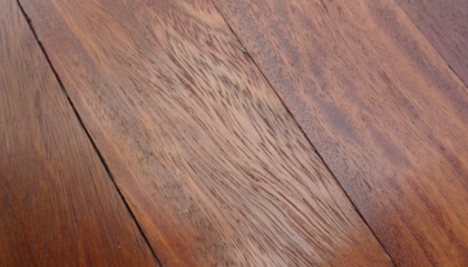 Sample of Iroko