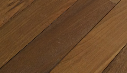 Sample of Burmese Teak