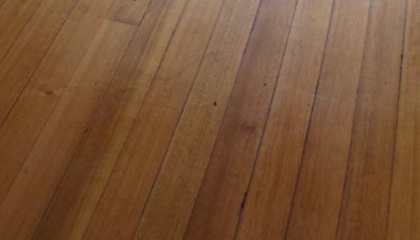 Sample of Tasmanian Oak